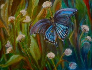 Butterfly Blue ©Morri